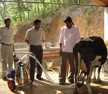 Portable Milking Machines